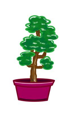 植木・庭木の剪定、お手入れについて 1